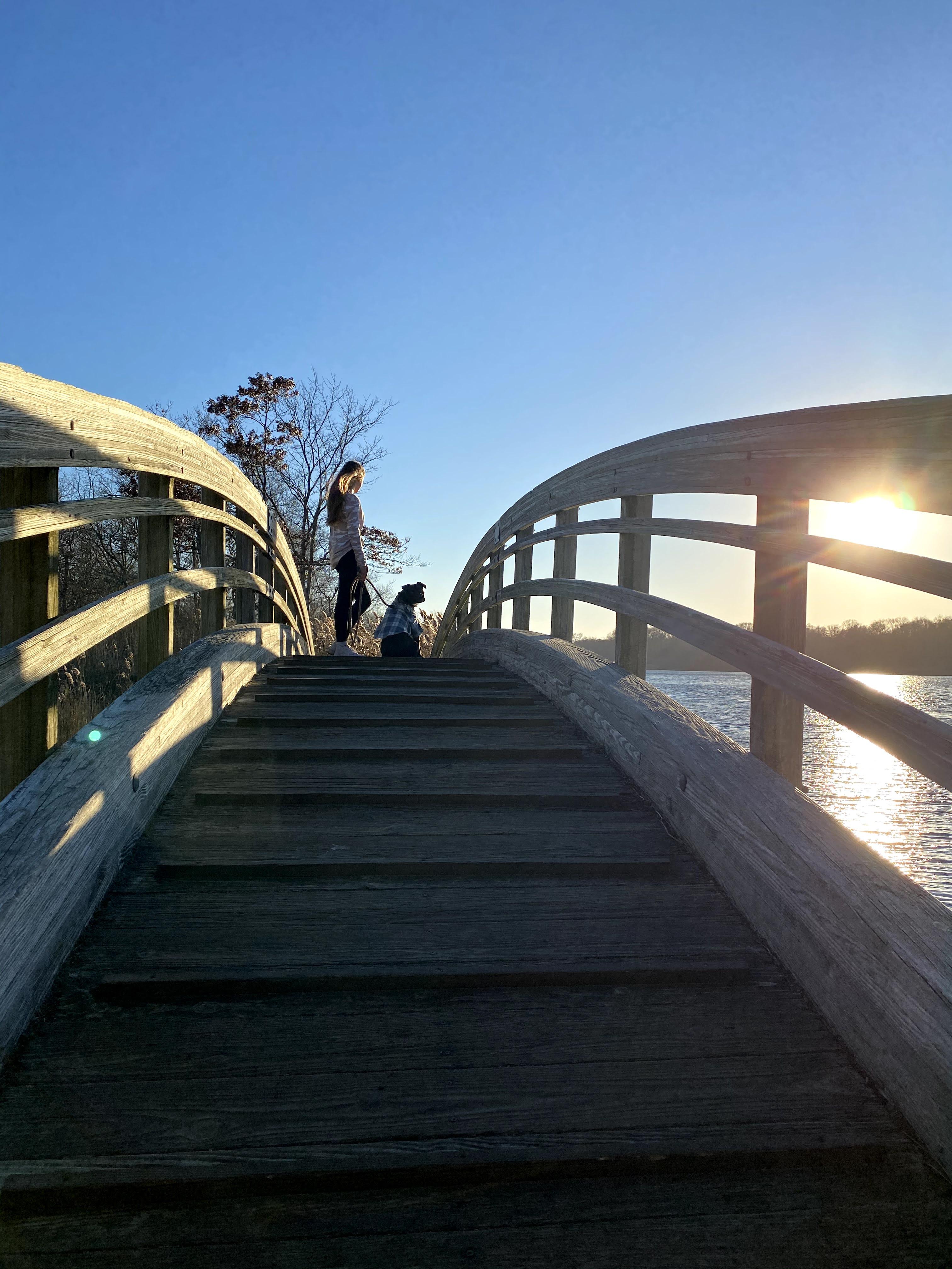 Avery & Archie on Ryan Park Bridge